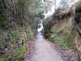 CaminoDelNorte-029.jpg