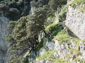 CaminoDelNorte-219.jpg