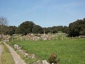 CaminoDelNorte-268.jpg
